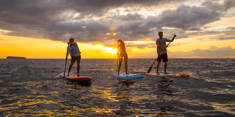 3 Personen stehen am SUP bei Sonnenuntergang am Wasser
